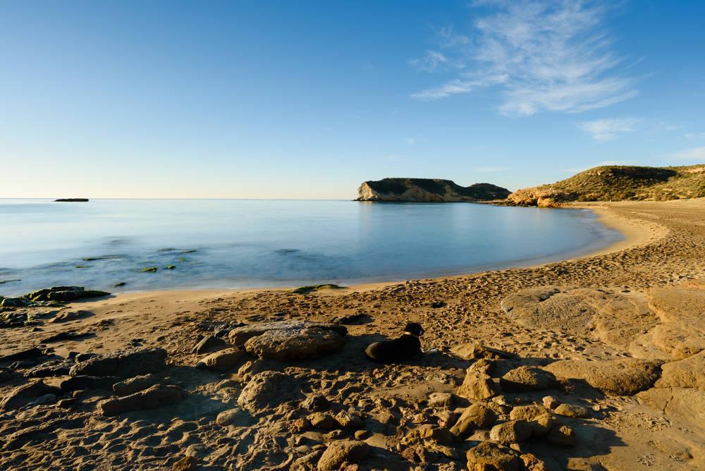playa-de-la-higuerica